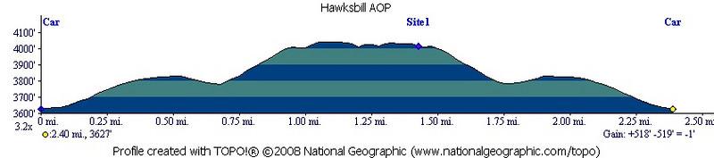 Hawksbill 2008-11-02