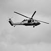 MH60_Seahawk-005_BW