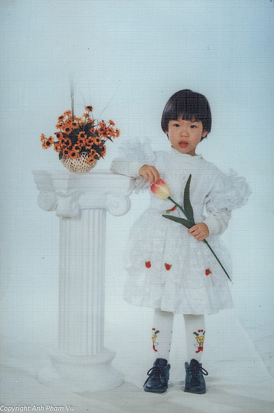Vietnam 90s 06.jpg