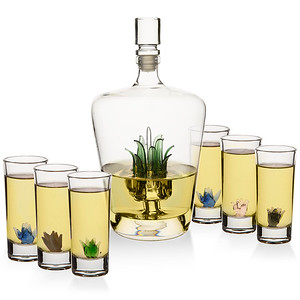 Tequila Decanter