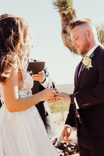 Elise&Michael_Wedding-Jenny_Rolapp_Photography-570.jpg