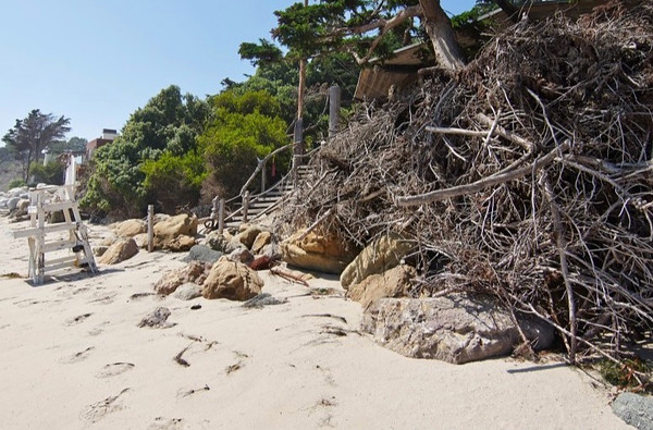 Beach-06i_018-875x581.jpg
