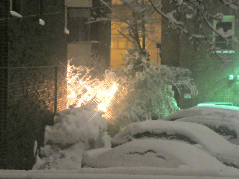 Snow on Sunday night - seen from my AirBnB room. Note the accumulation on the roofs of the cars in the parking lot