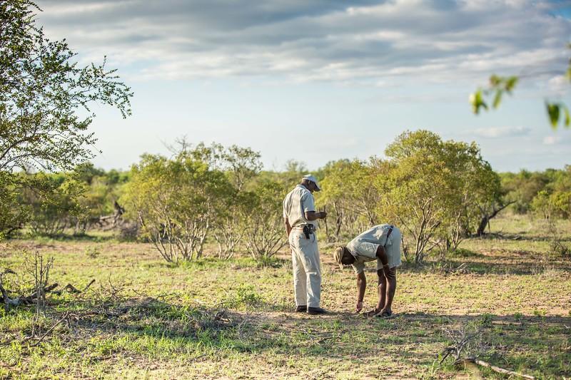 SouthAfricaHoneymoon-720.jpg