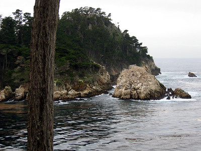 Point Lobos California State Park