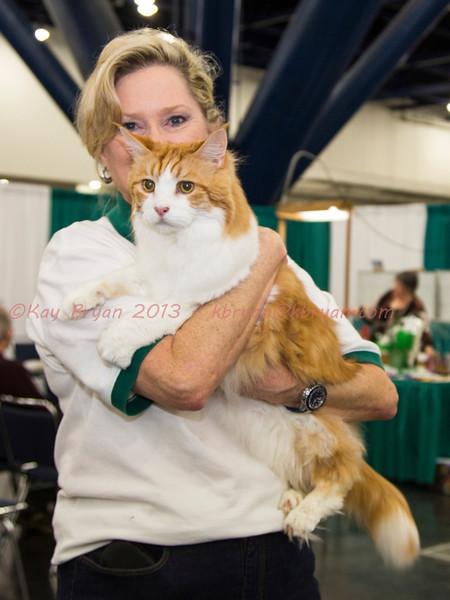 CatShow2014021.JPG