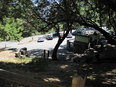 family picnic site photos