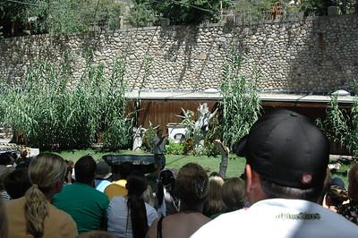 Hogle Zoo - August 2007