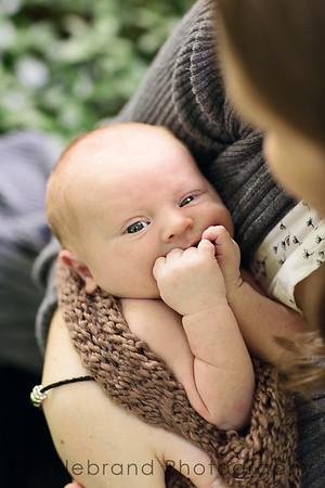 Dylan: Newborn Session