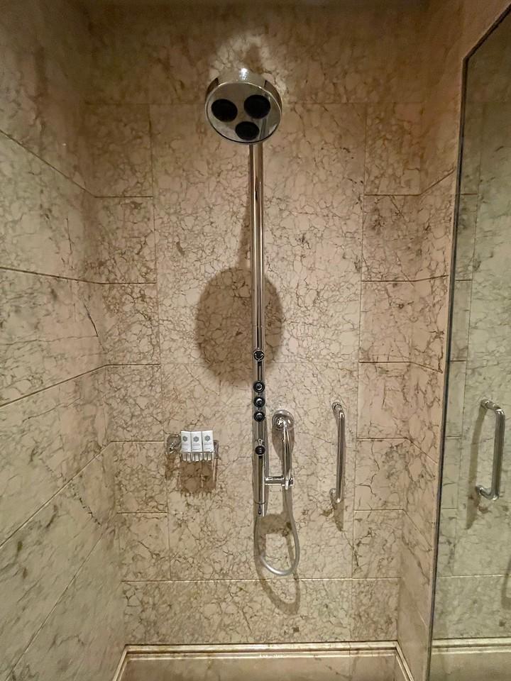 Caroline Astor Suite Rain Shower