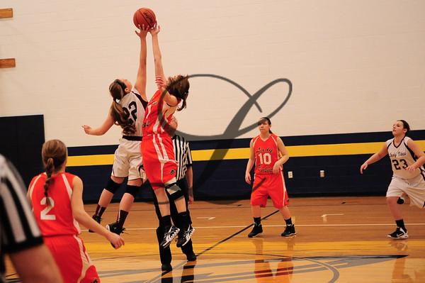 VC-NY(G) Basketball 2013-14