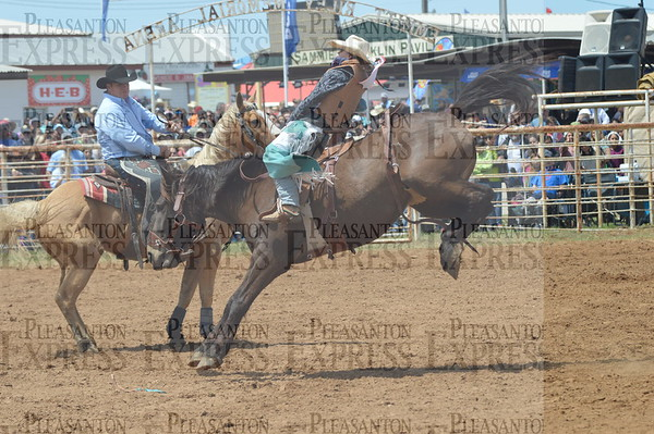 2018 Strawberry Festival Rodeo