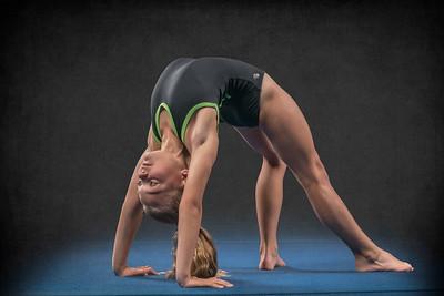 Action Gymnastics 2018-2019 Team