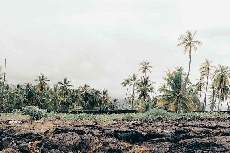 Hawaii20-88.jpg