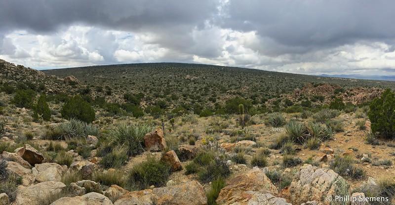 Cima Dome in the Mojave Preserve