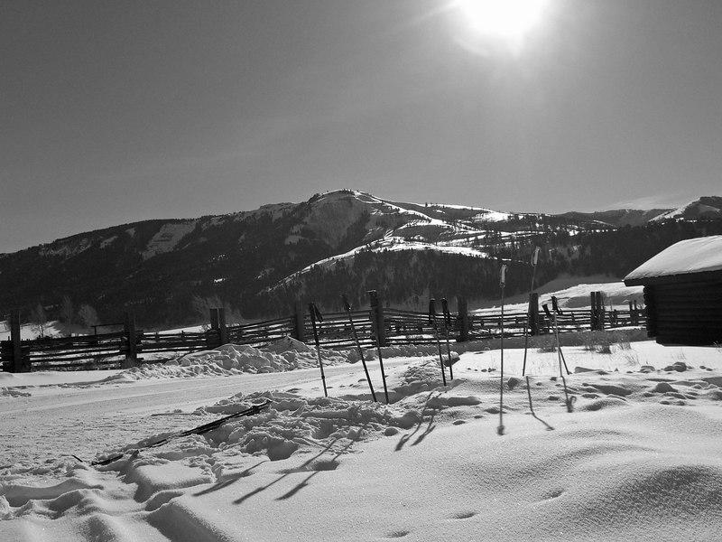 mid-day at Buffalo Ranch