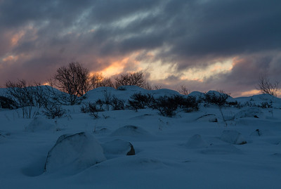 Klobban: Finland on Ice