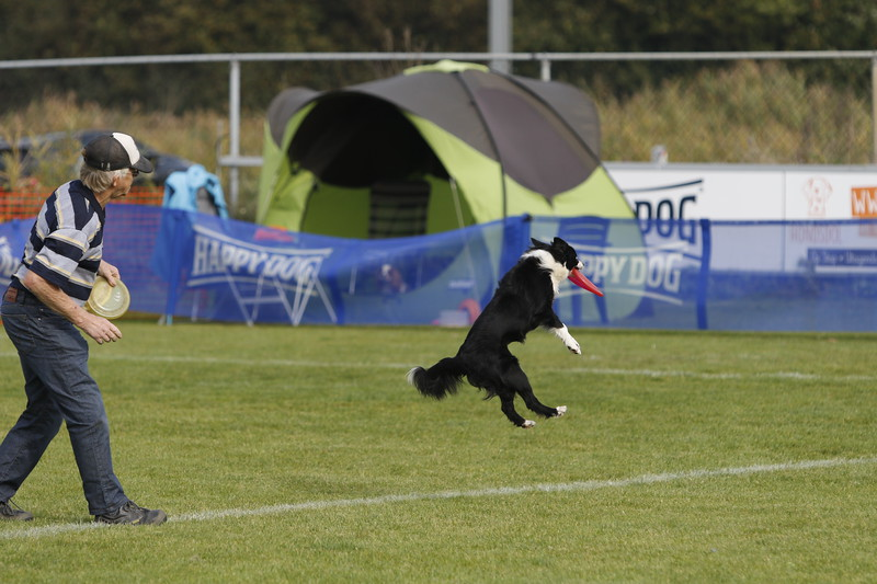 Images from folder 2018-10-21_NK_Frisbee