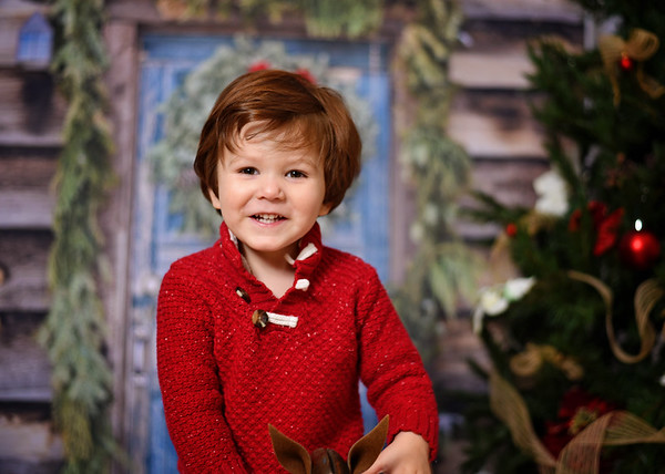 Mateo {holiday mini}