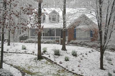Snow - 2009