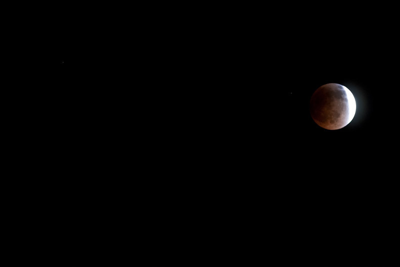 ClementineSanta-8.jpg