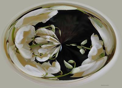 DIGITAL CREATIVE - Bell Shape FlowersPat JonesMa13silver