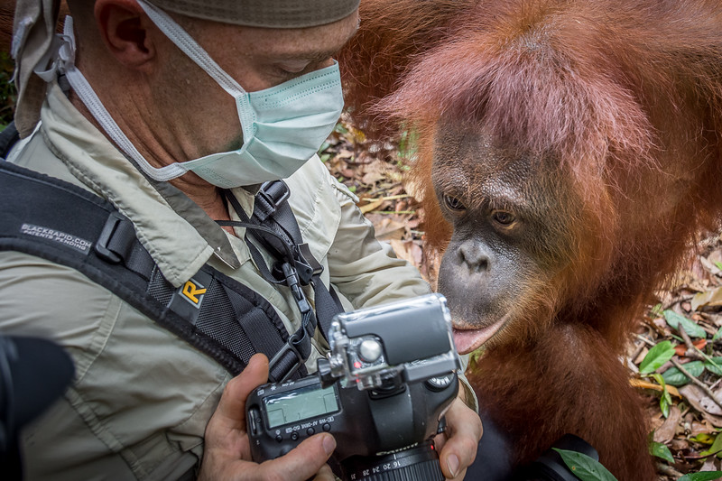 Borneo-2272.jpg