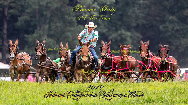 2019 National Championship Chuckwagon Races