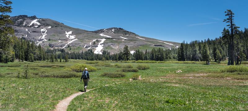 Tahoe Rim Trail to Carson Pass