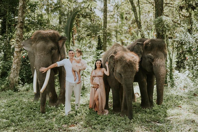 Tony & Vicky & Valentina. Elephants and waterfall in Bali