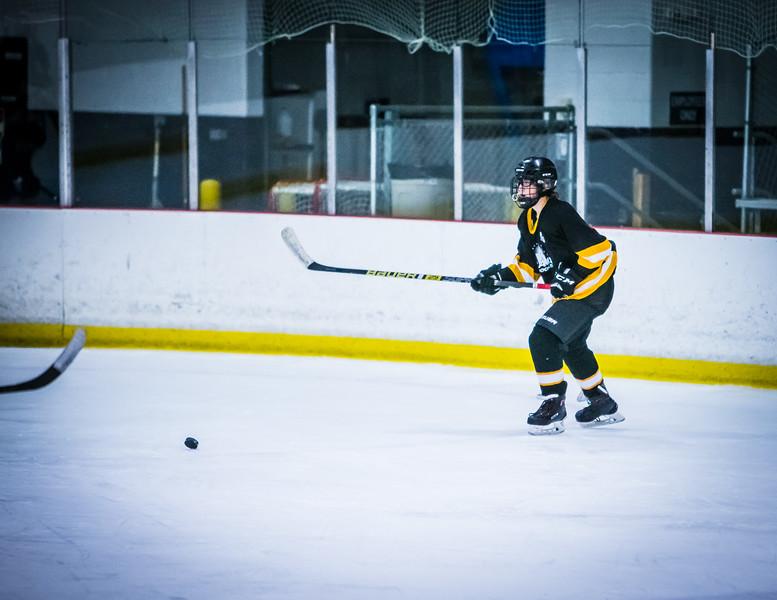 Bruins2-365.jpg