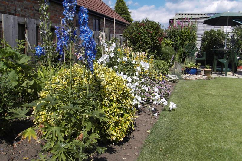 my lovely garden 2.jpg