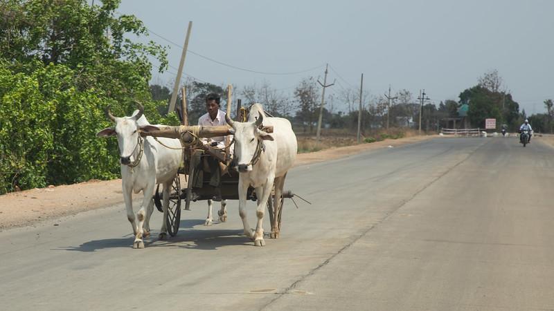190419-135648-Nepal India-7538.jpg