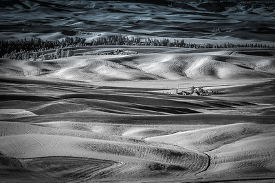 The Palouse Washington State