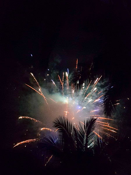 fireworks in the sky with palm trees