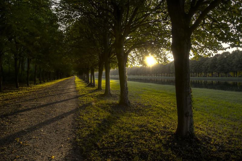2011-Fontainebleau_Jogging.jpg