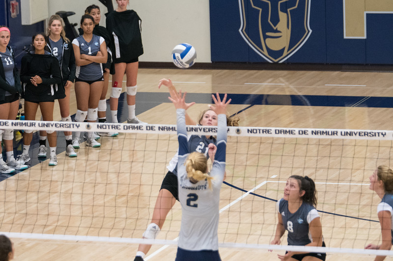 HPU Volleyball-92217.jpg