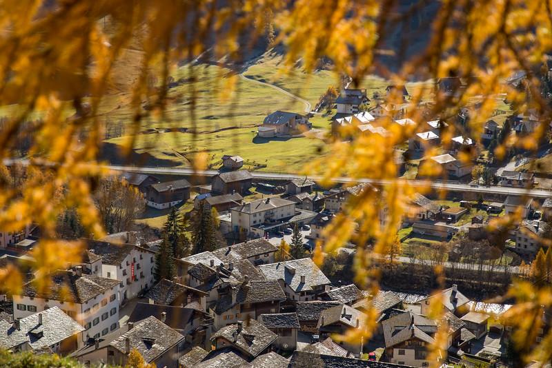 Herbst-im-Rheinwald--9.jpg