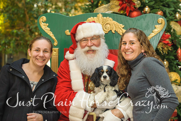 Santa Photos - Willow Glen, Dec 21 2013