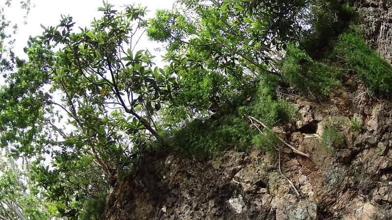 Martindell-Adventure_Bermuda-150416-00094.JPG