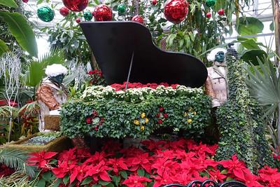 Christmas Flower Show 2014 - December 28, 2014