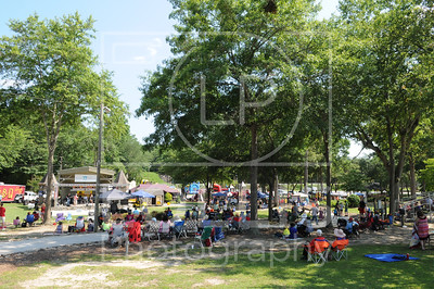Party in the Park June 2015