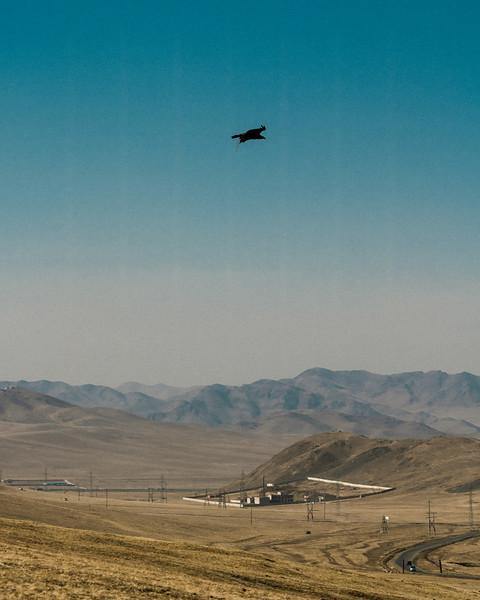 mongolianMarch-2482.jpg