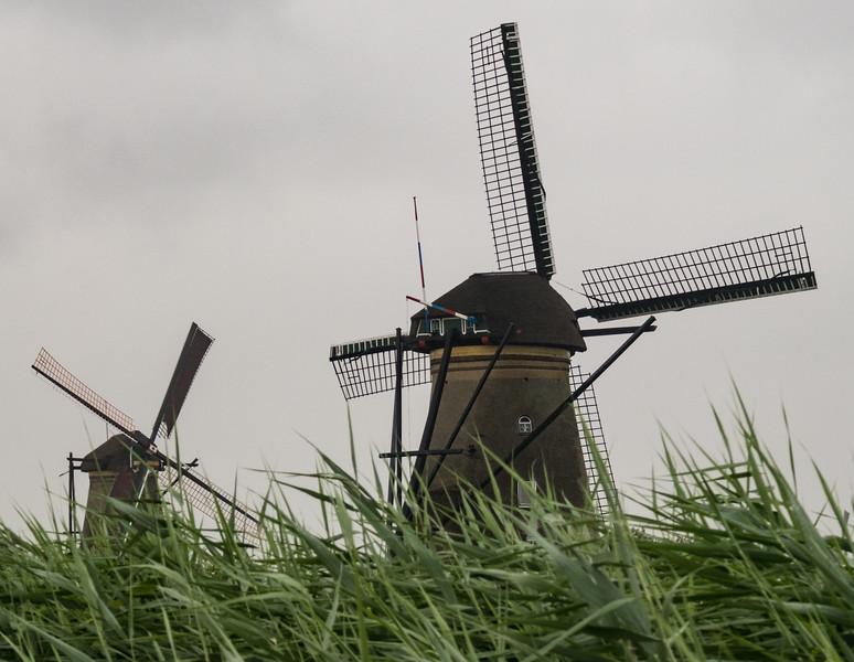 Kinderdijk Netherlands Windmills June 30, 2017  005.jpg