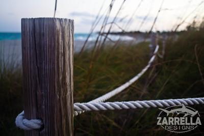 """""""Sea Oats on Dania"""" (Dania Beach, Florida)"""