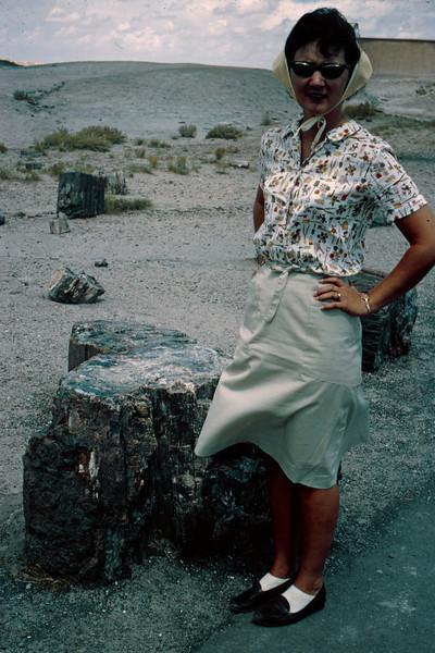 1965-09 - Jo at Petrified Forest AZ