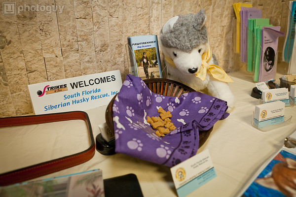 0024-South Florida Siberian Husky Rescue-Edit