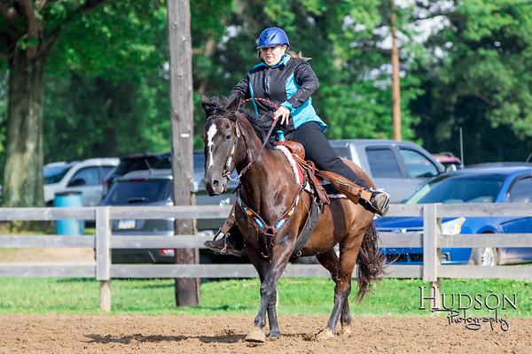 Cutback Horse