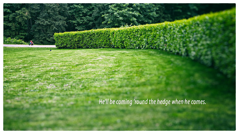 He'll be coming 'round the hedge when he comes