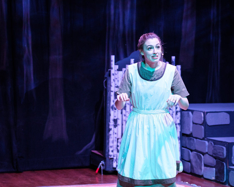 2018-03 Into the Woods Performance 0800.jpg